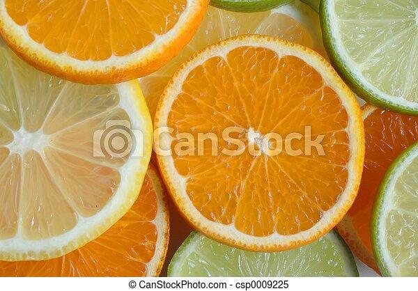 Fruit Slices - csp0009225