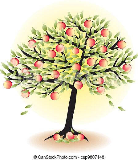 fruit tree with leafs and apples isolated on white   - csp9807148