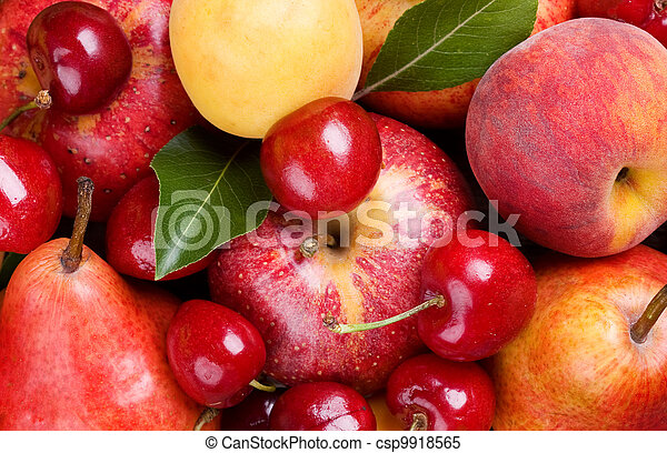 fruits and berries  - csp9918565