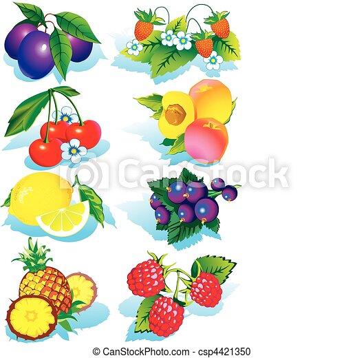 Frutas. - csp4421350