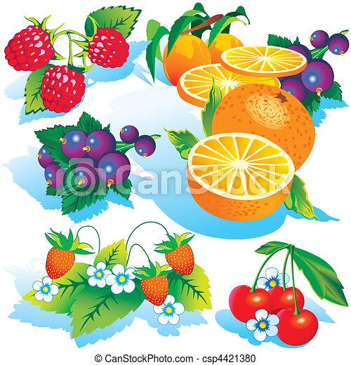 Frutas. - csp4421380