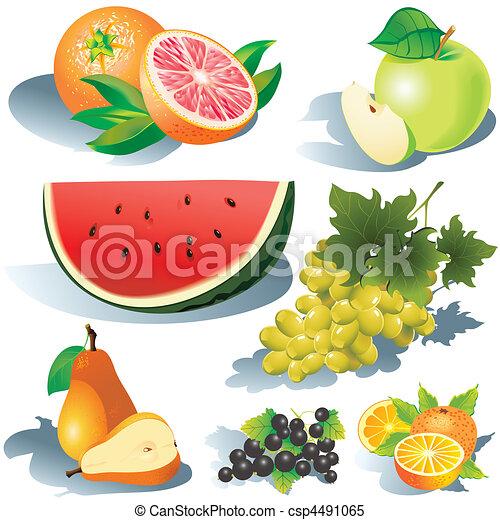 Frutas. - csp4491065
