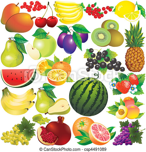 Frutas. - csp4491089
