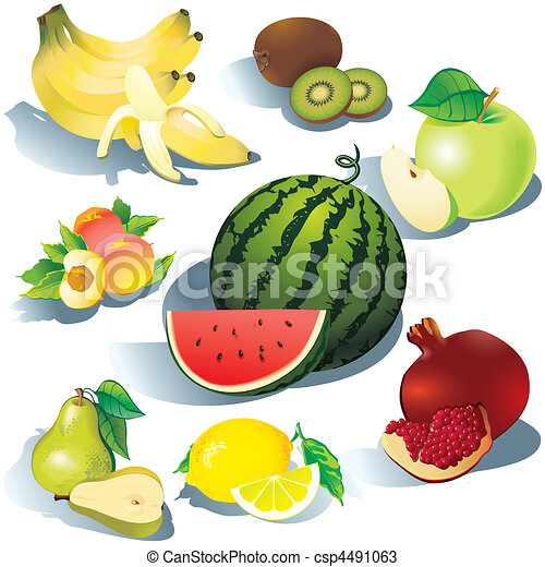 Fruits. - csp4491063