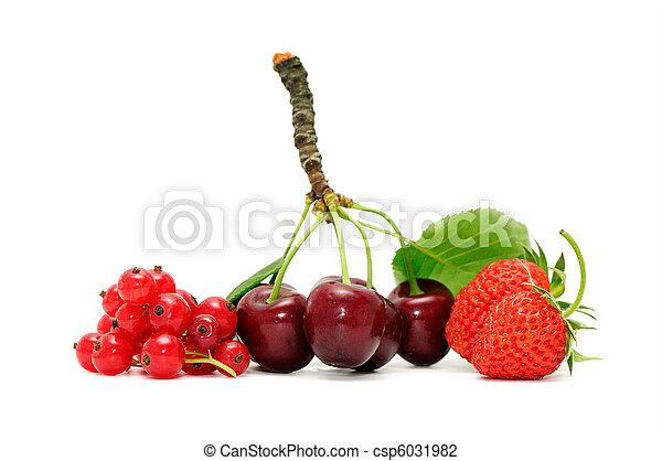 fruits - csp6031982