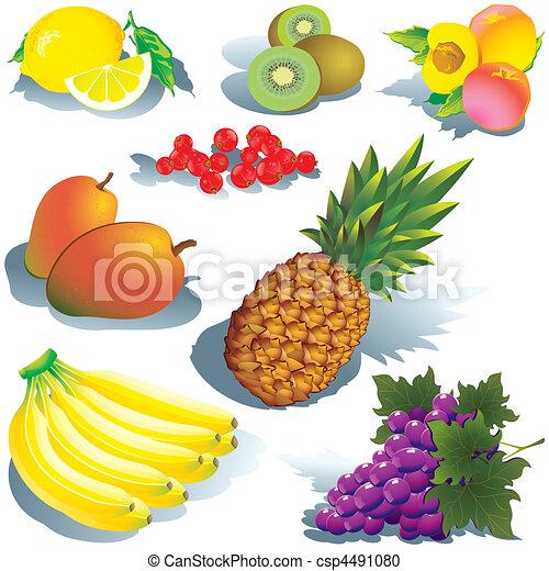 Fruits. - csp4491080