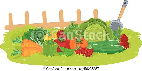 Fruits Vegetables Garden Illustration