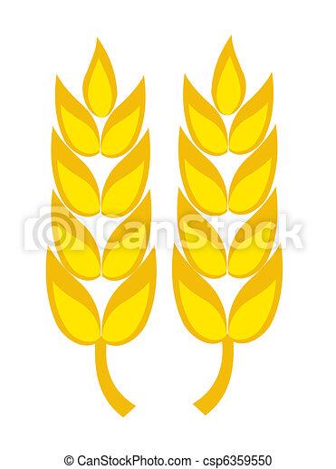frumento, orecchie - csp6359550