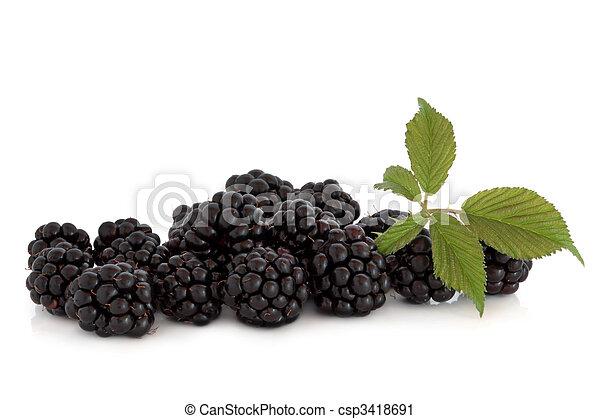 fruta, amora preta - csp3418691