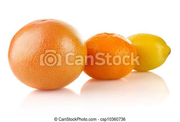 Fruta de cítricos - csp10360736