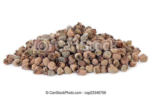 fruta, chinês, framboesa - csp23348756