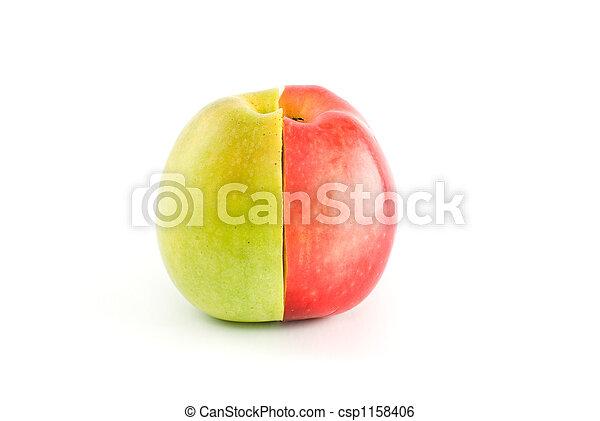 La mitad de las manzanas rojas y verdes forman una fruta entera - csp1158406