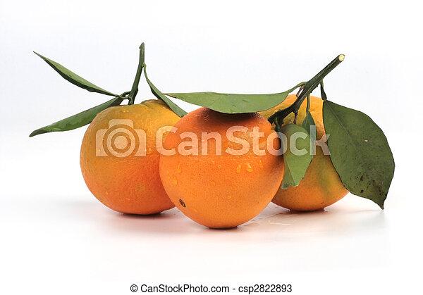 frutta tropicale - csp2822893
