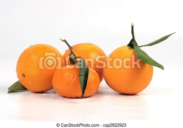 frutta tropicale - csp2822923