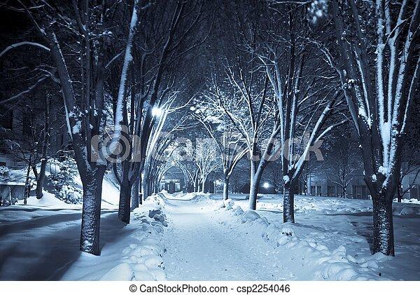 fußweg, still, schnee, unter - csp2254046