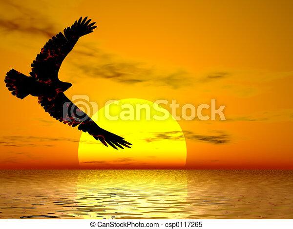 fuego, águila, salida del sol - csp0117265