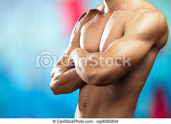 fuerte, torso - csp8365604