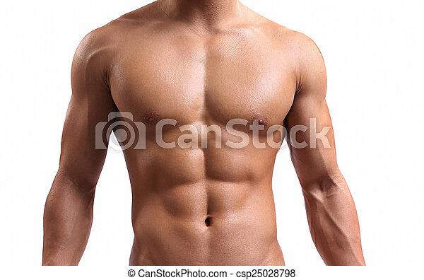 fuerte, torso, joven - csp25028798