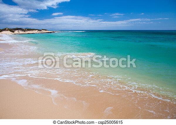 Fuerteventura, Burro Beach - csp25005615