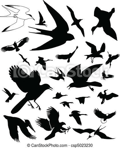 fugl, iconerne - csp5023230