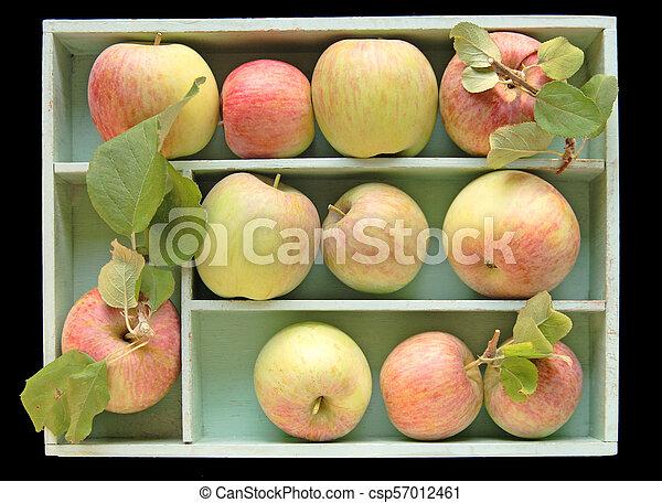 Fuji apples in a box - csp57012461
