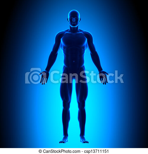 Full Body - Front View - Blue conce - csp13711151