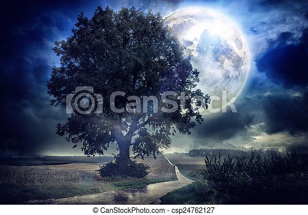 Full moon over corn field - csp24762127