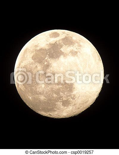 Full Moon - csp0019257