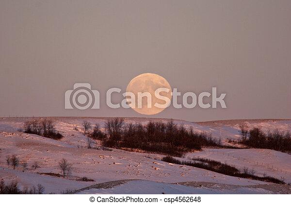 Full moon rising over a Saskatchewan ridge - csp4562648