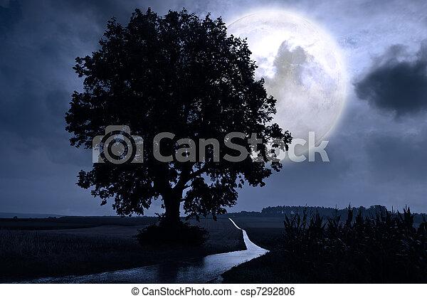Full moon - csp7292806