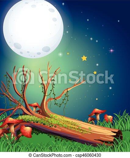 Escena con luna llena por la noche - csp46060430