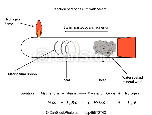 Fully labelled illustration of magnesium reaction with steam - csp45572743