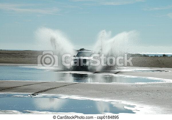 Fun on the beach - csp0184895