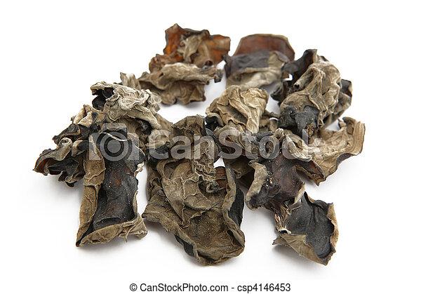 fungo, pretas - csp4146453