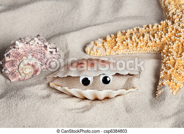 Funny beach seashell - csp6384803