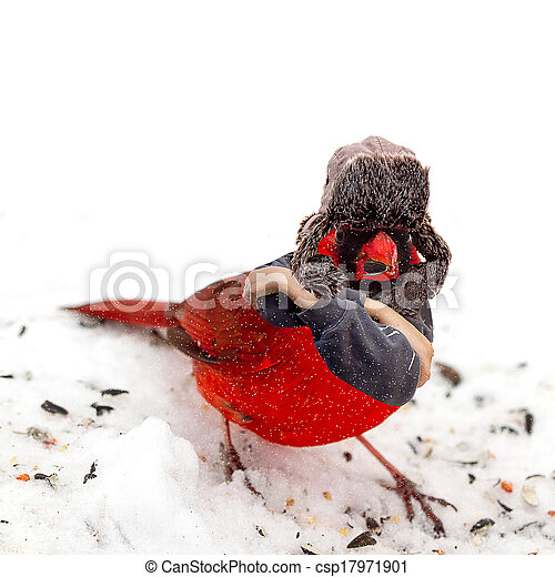 Funny Image of Cardinal in Hat - csp17971901