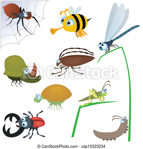 Funny insect set #2 - csp10323234