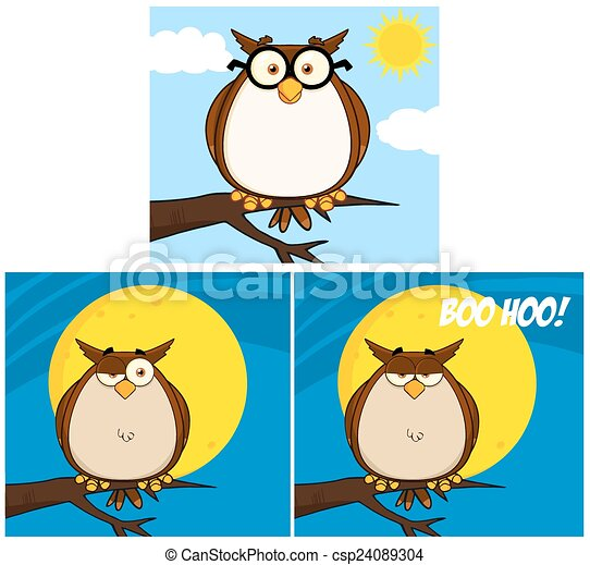 Funny Owl Character. Collection Set - csp24089304