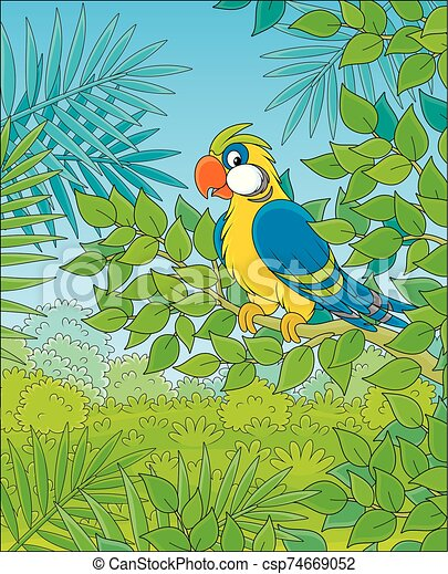 Funny parrot on a branch - csp74669052