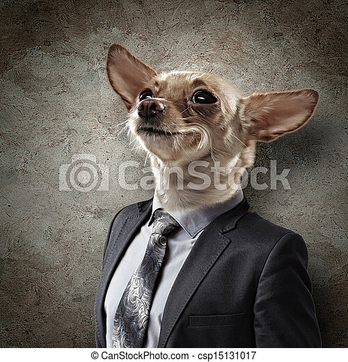 Funny portrait of a dog in a suit - csp15131017