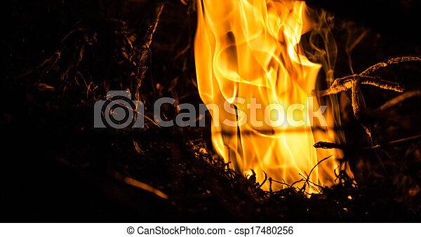 fuoco, astratto - csp17480256