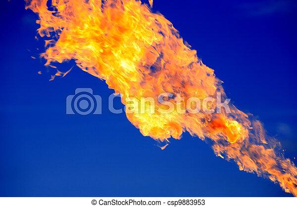 fuoco, blu - csp9883953