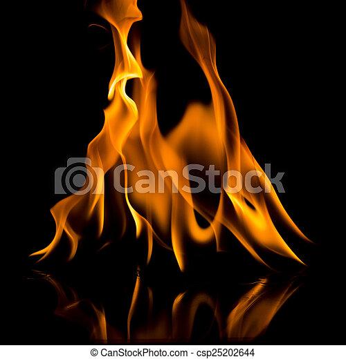 fuoco, fiamma - csp25202644