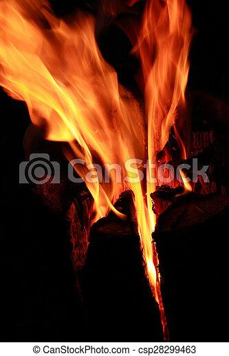 fuoco, fiamma - csp28299463