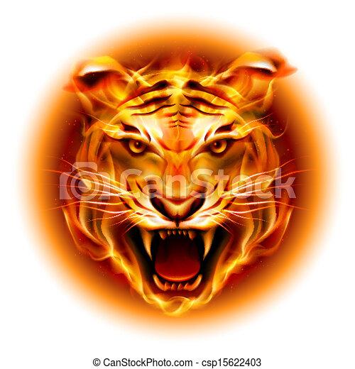 fuoco, testa tigre - csp15622403