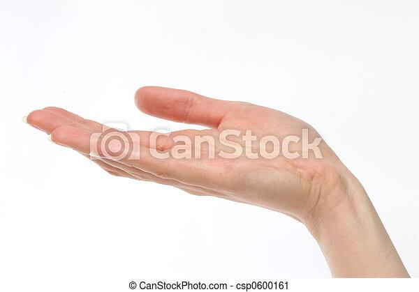 fuori, tenendo mano - csp0600161