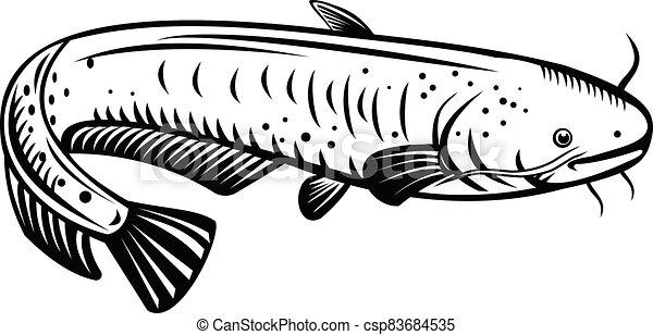 géant, lac, biwako-onamazu, silurus, blanc, noir, woodcut, retro, poisson-chat, biwa, biwaensis - csp83684535