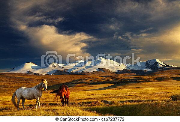 górski krajobraz - csp7287773