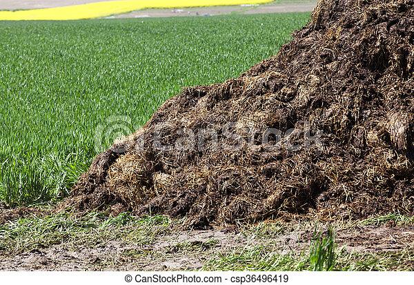 Jordbrukspolitik som luktar dynga