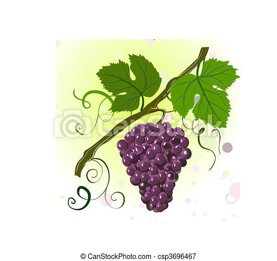 Gałąź Winogrona